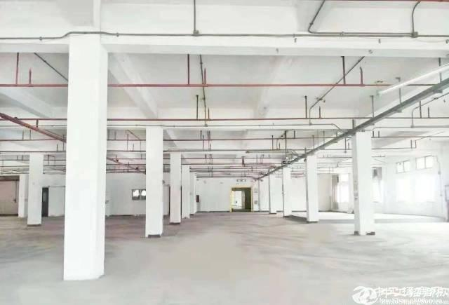 南光高速4800平方仓库招租,现成货台