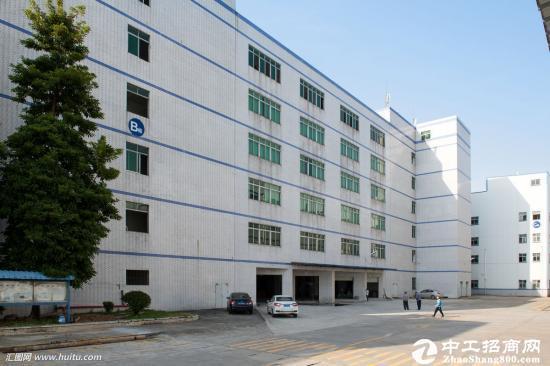 沙田镇新出标准一楼1100平米带办公室装修厂房