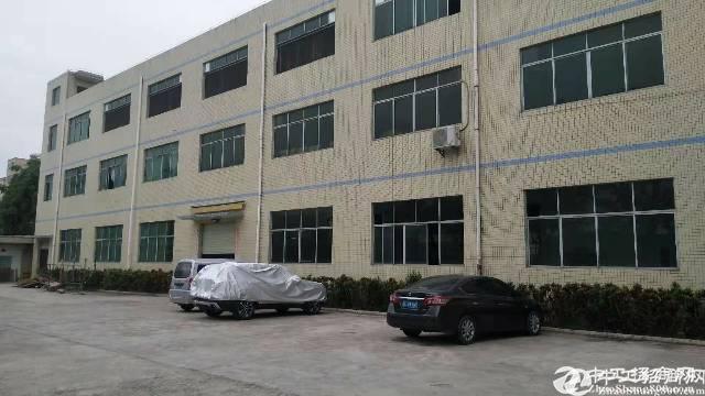 惠阳新圩标准一楼600平,楼上1000平实际面积出租