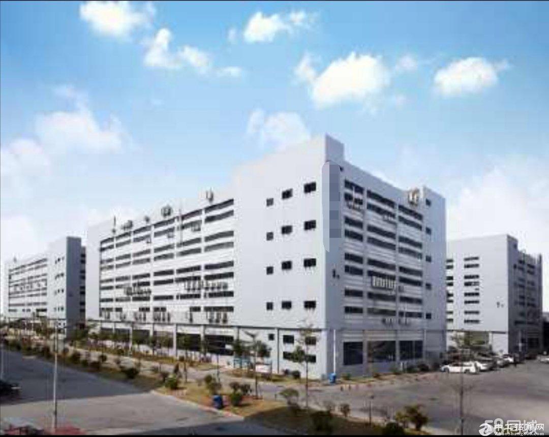 (出租) 福永和平高新园区带红本厂房 8000平米大小分租