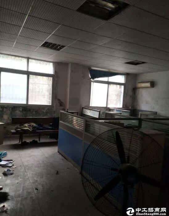 青山区 厂房 4500平出租  带办公