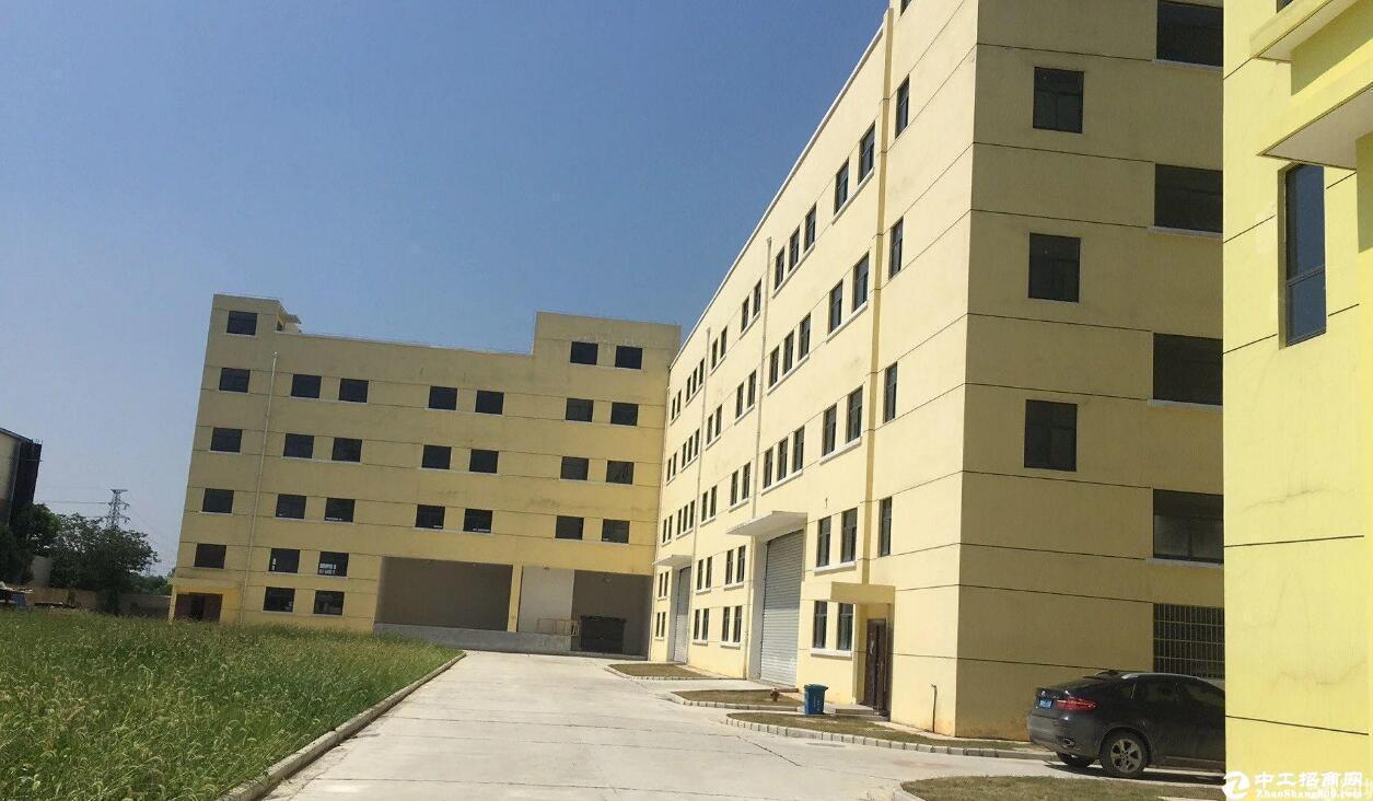 汉南区全新框架5000平米厂房出租