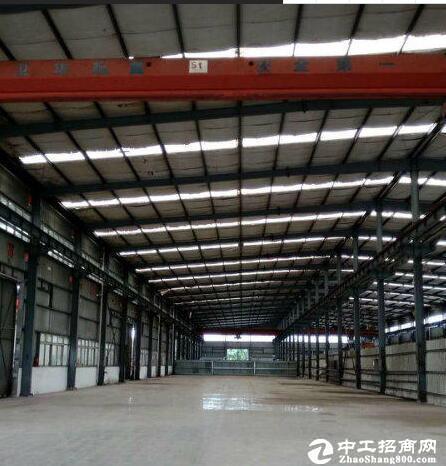 汉南500-10000钢构厂房出租