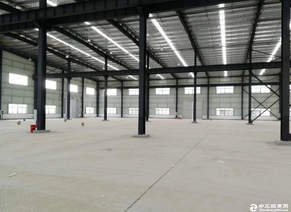 汉南6000平标准钢构厂房可分租