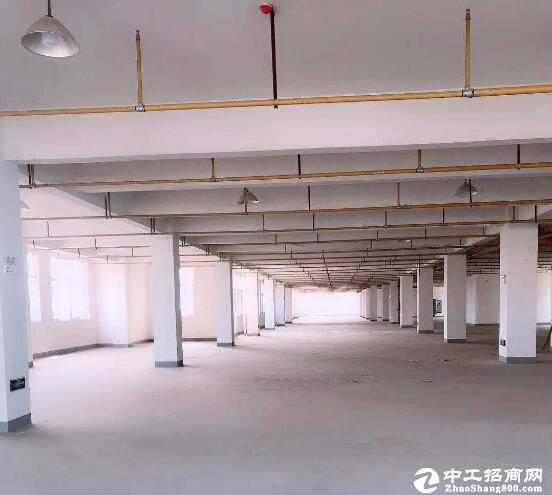 汉阳三环线黄金口6000平米     框架结构厂房产业园