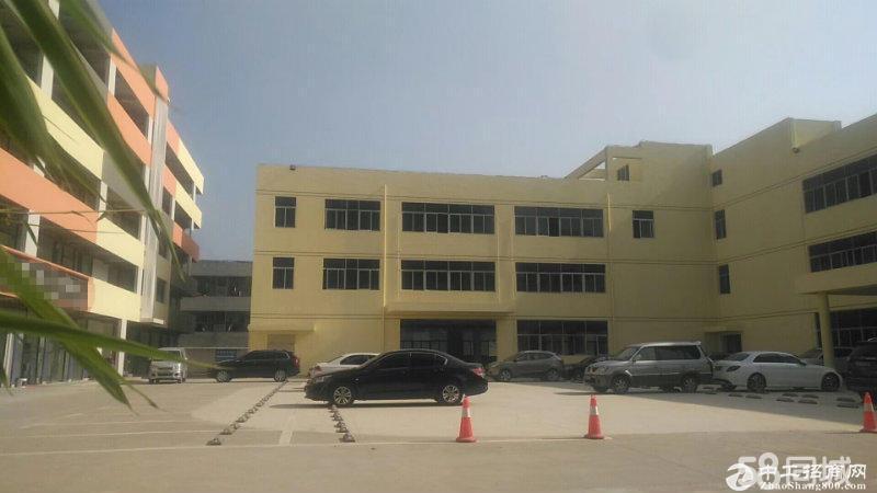 坪地工业园区一楼1200平米厂房  带精装修