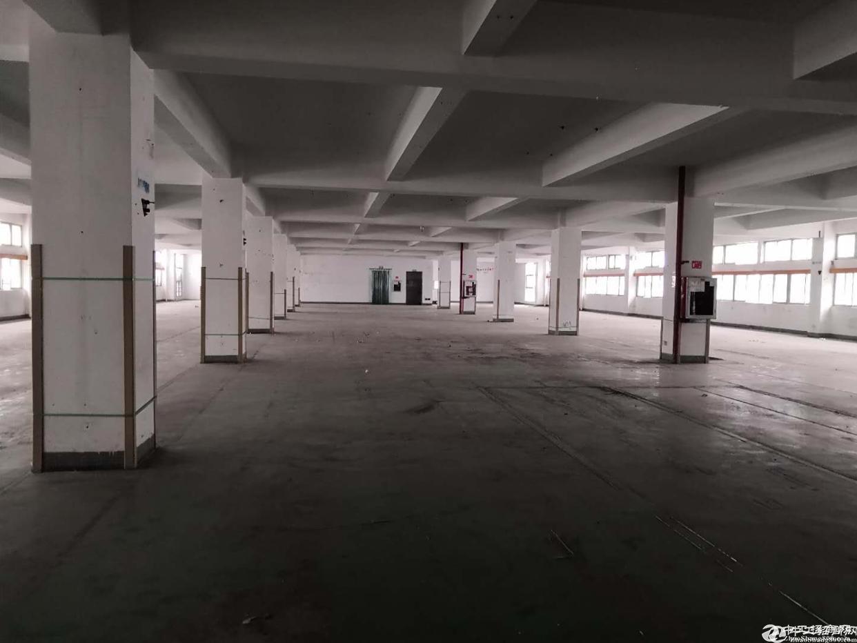 石岩塘头第三工业区楼上2300平方厂房招租