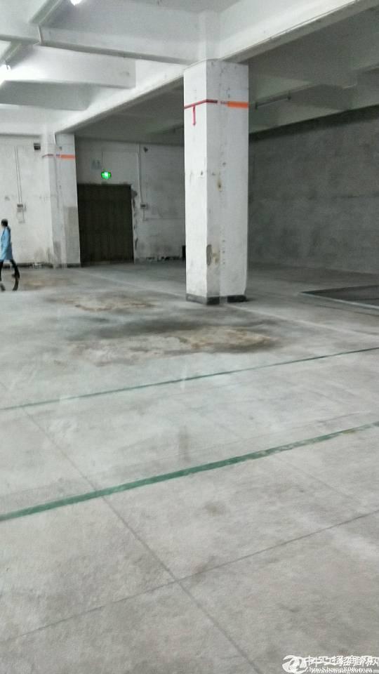 六约标准厂房一楼550平30块带卸货平台