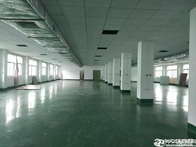 石岩应人石文韬工业区4楼厂房615平米出租