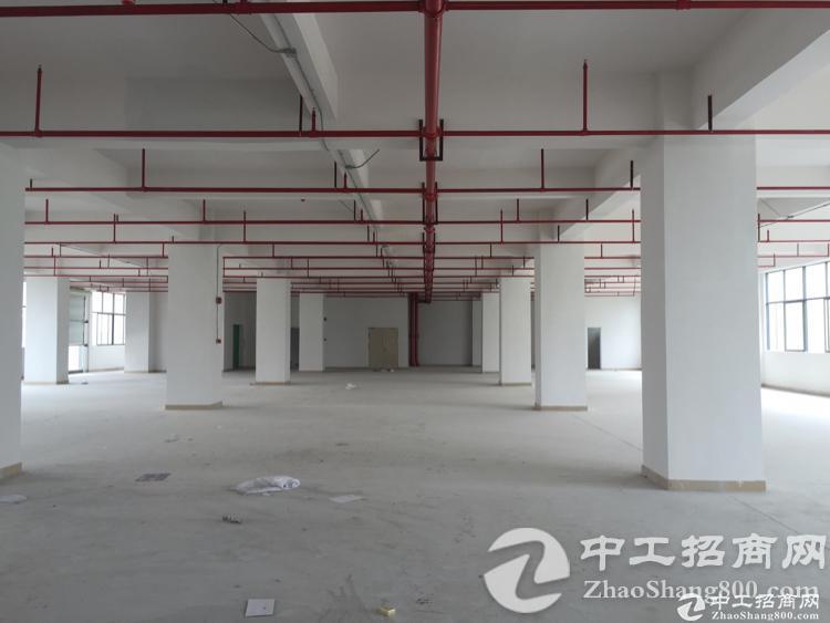 公明南光高速出口全新厂房单层1300平米招租