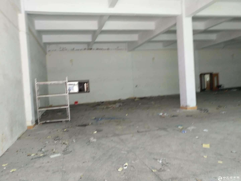 沙田镇新出二楼整层1530平米 精装修厂房