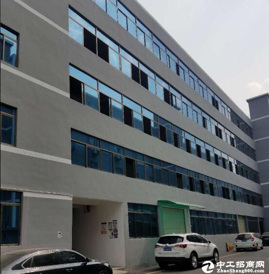 [新洲厂房] 问津孔雀城,标准厂房出租,可分租交通方便