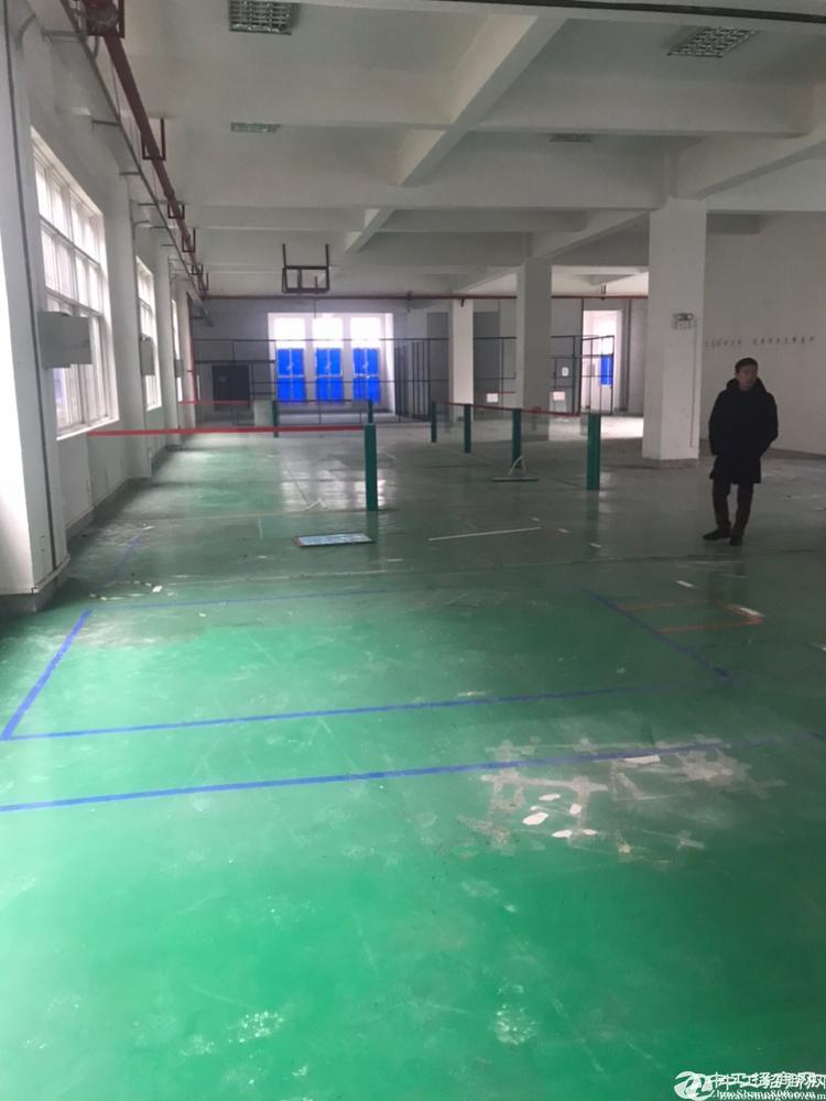 [江夏厂房] 藏龙岛成熟工业区三层厂房