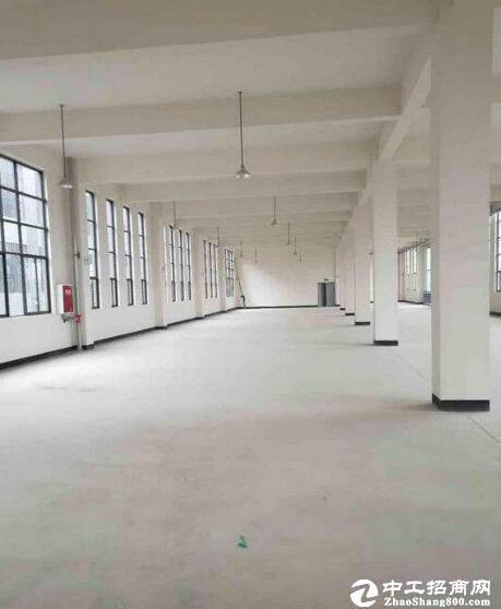 汉阳黄金口淘金路  科技产业园仓库出租 可做办公