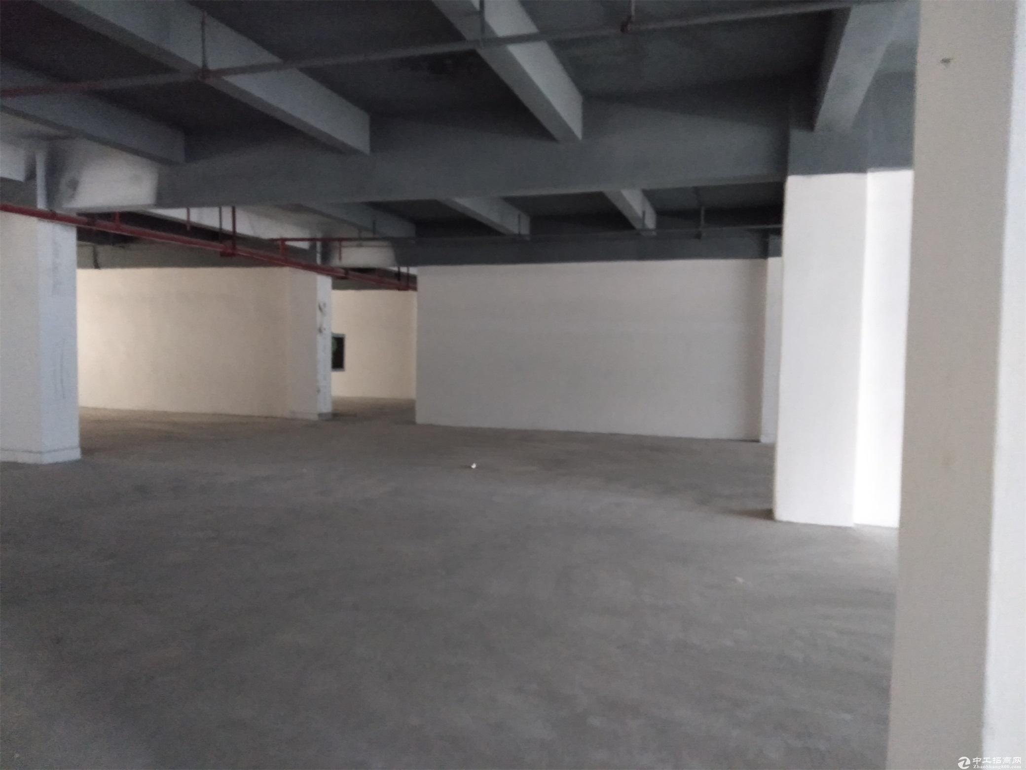 木棉湾地铁站新出电商园二楼300平,价格便宜