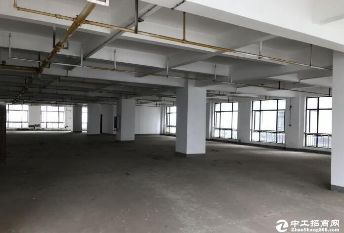 汉阳开发区黄金口花园式办公厂房3000平招租