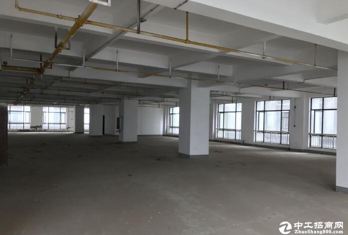 汉阳开发区黄金口花园式办公厂房3000平招租-图2