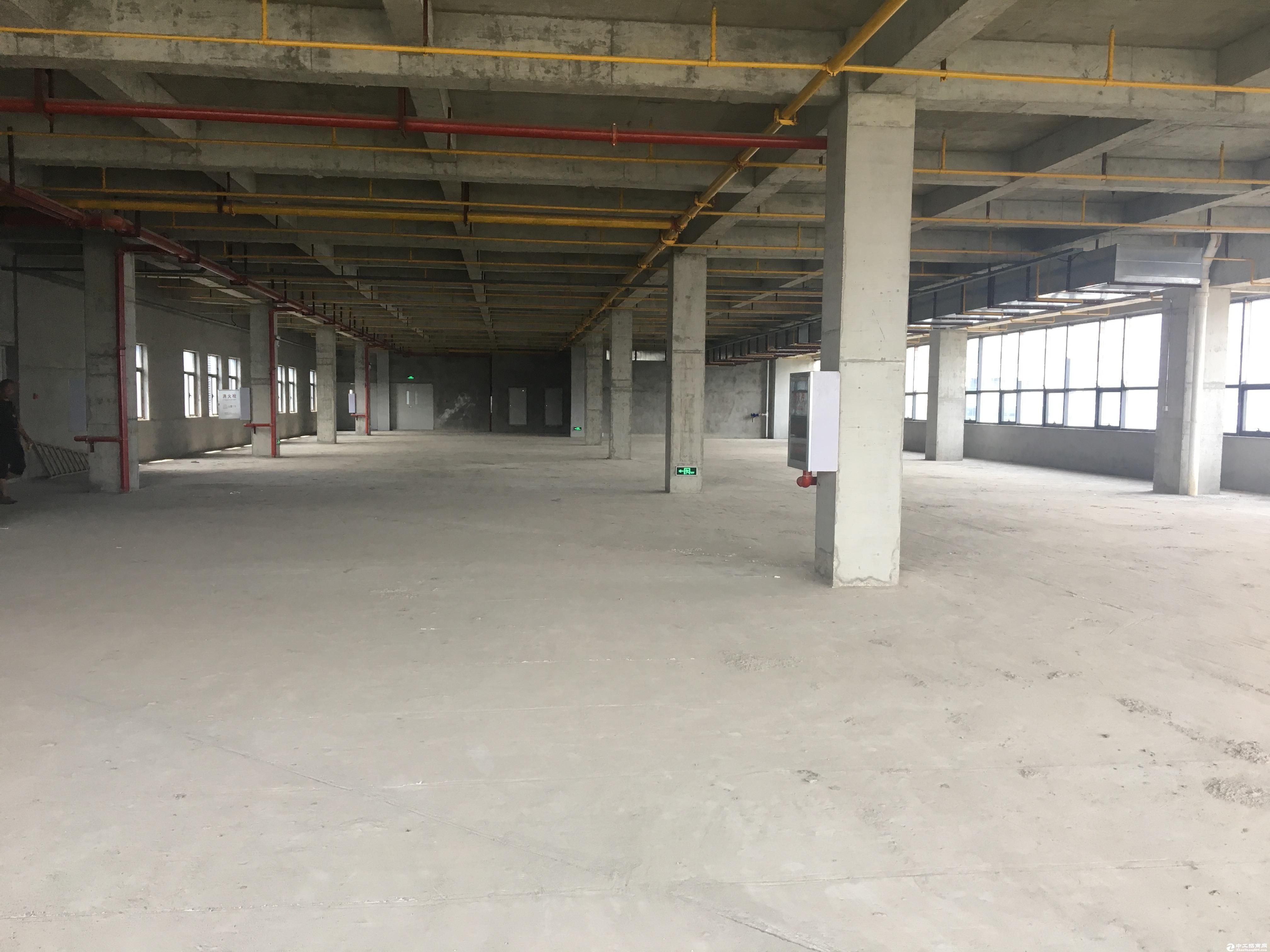 黄陂空港生物医药健康产业园  3000标准厂房可整租可分租