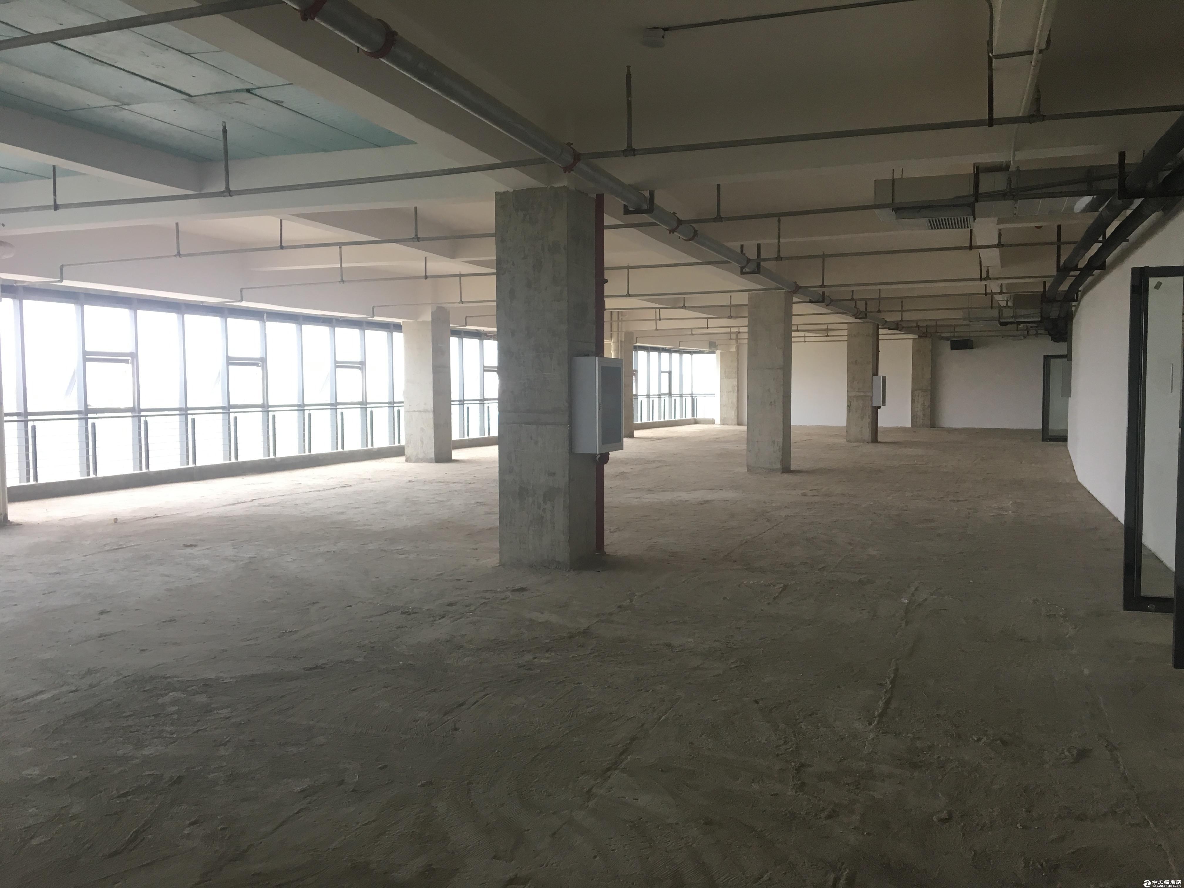 黄陂空港生物医药健康产业园  3000标准厂房可整租可分租-图3