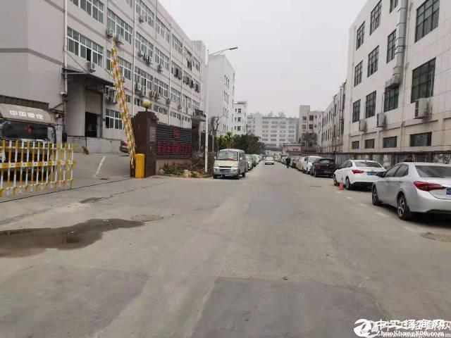 石岩汽车站旁10800平方独栋厂房招租,可分租