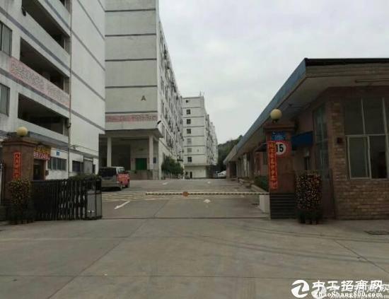 南山西丽天虹附近新出楼上600平米厂房出租