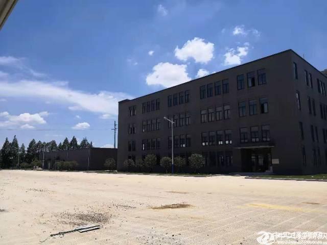 东西湖 36000平 全新物流园高台库招租