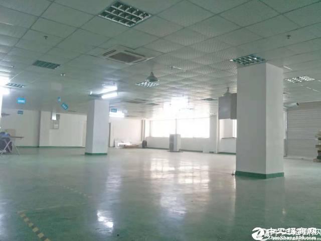宝安石岩3楼260平厂房,带装修招租