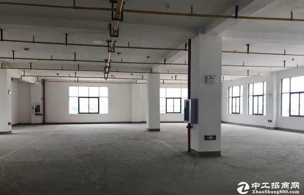 【火热招租】东湖高新区孵化器 可拎包入驻