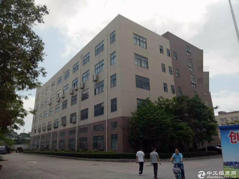 (出租) 平湖富民工业区新出二楼整层1600平方带装修无公滩