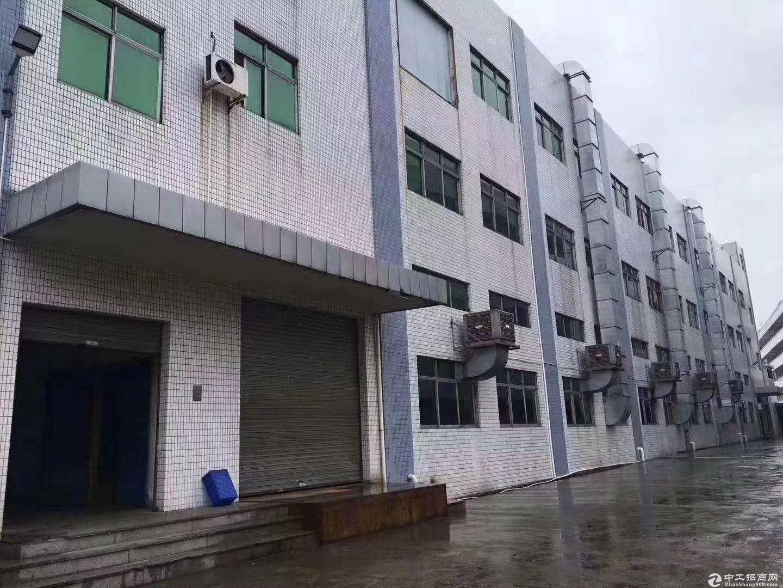 沙田镇原房东标准厂房三楼带现成办公室装修1800平方