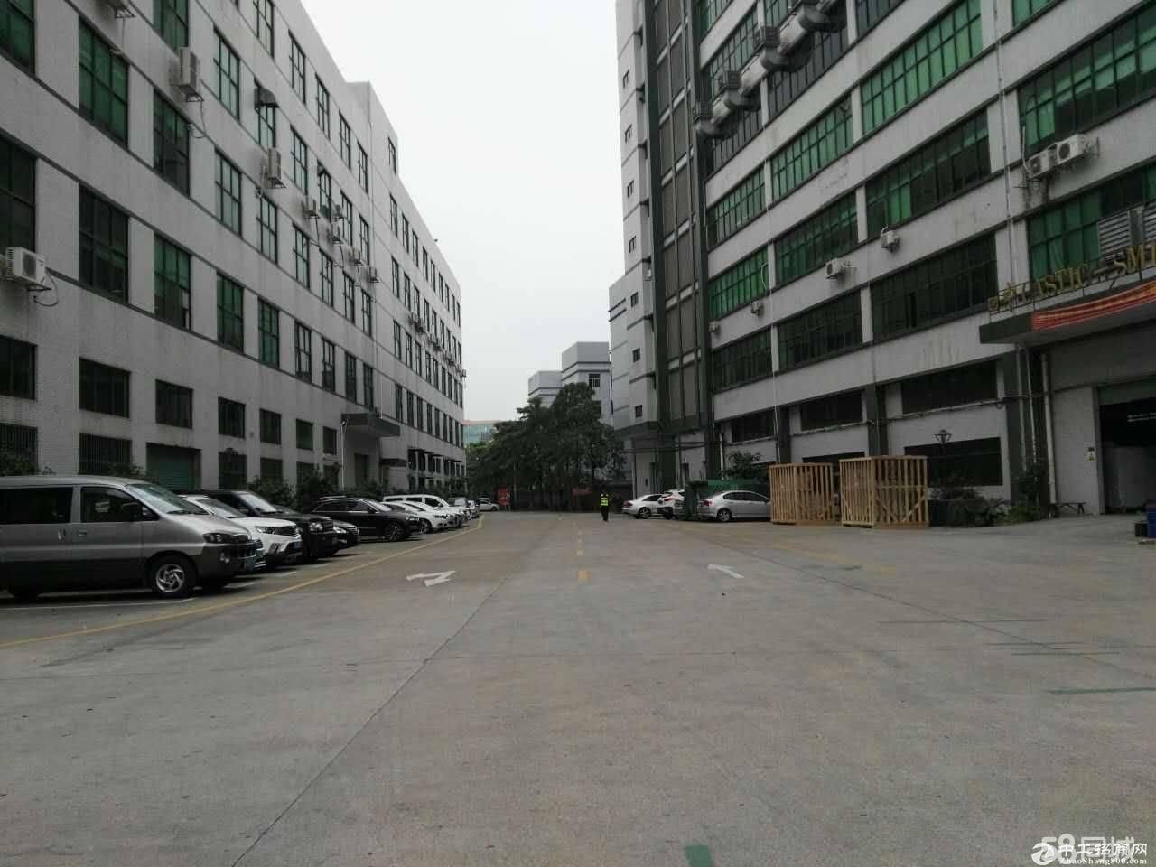 平湖辅城坳原房东楼上1800平米带豪华装修前台办公室,