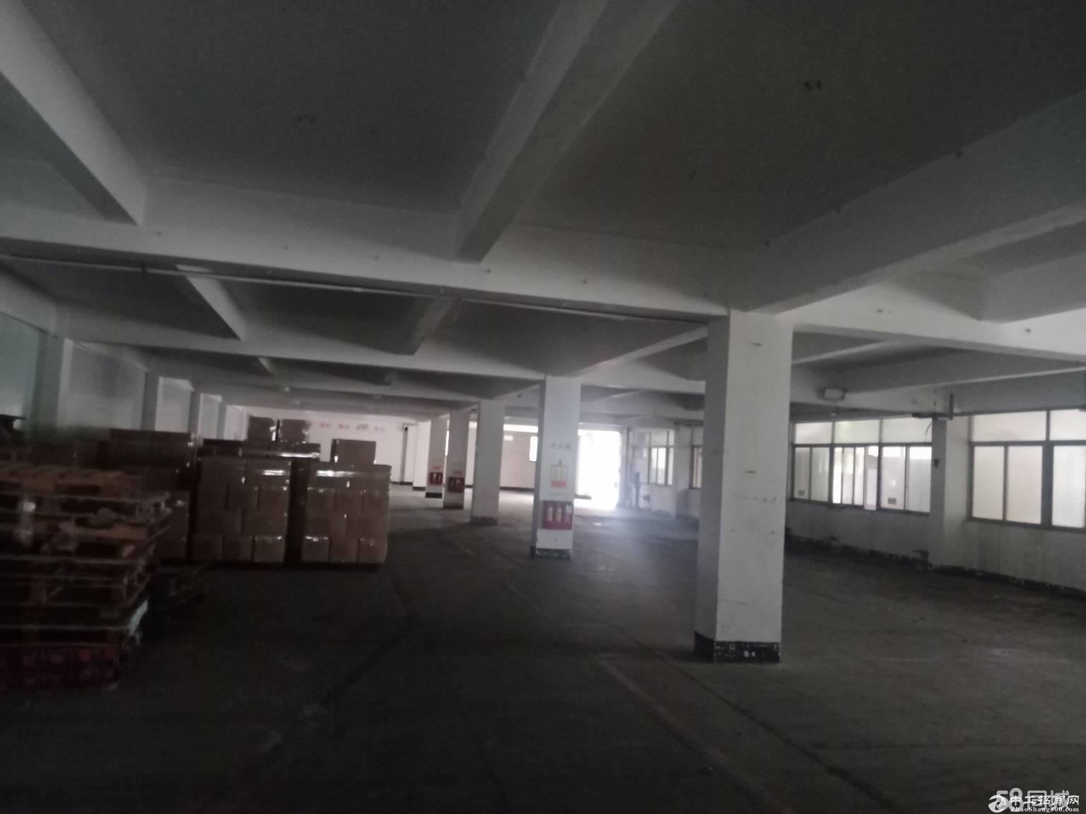 龙岗平湖新出原房东一楼厂房1800平,带卸货平台出租