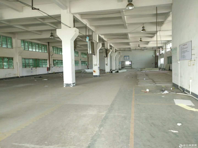 沙田镇原房东新出工业区1500平方红本带装修厂房出租