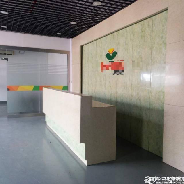 石岩龙大高速出口新建红本厂房2万平招租