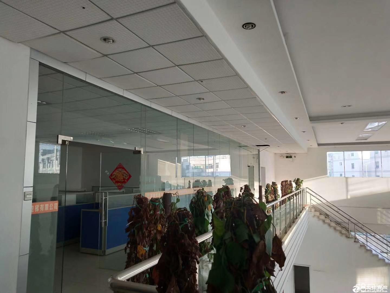 滴水12米高、独院红本钢构16200方招租可分租