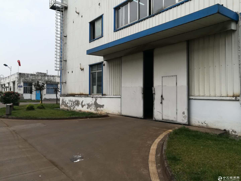 独门独院8000平米厂房1000平米起分带2个2T行车