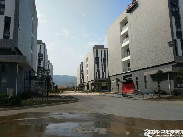 平湖高速出口独院6600平方大小可以分租厂房