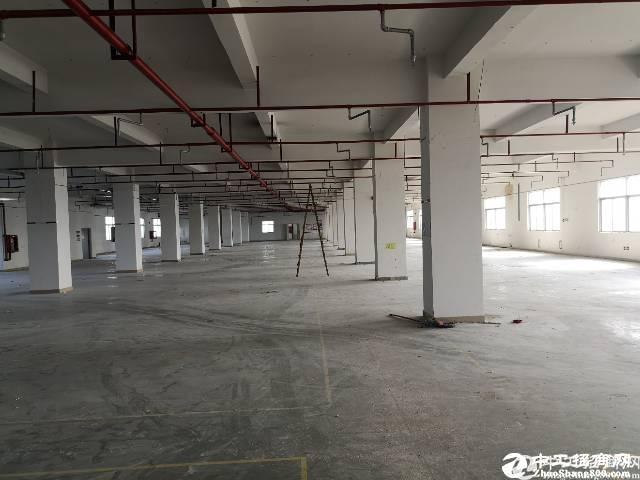 石岩塘头第三工业区楼上3300平米厂房出租