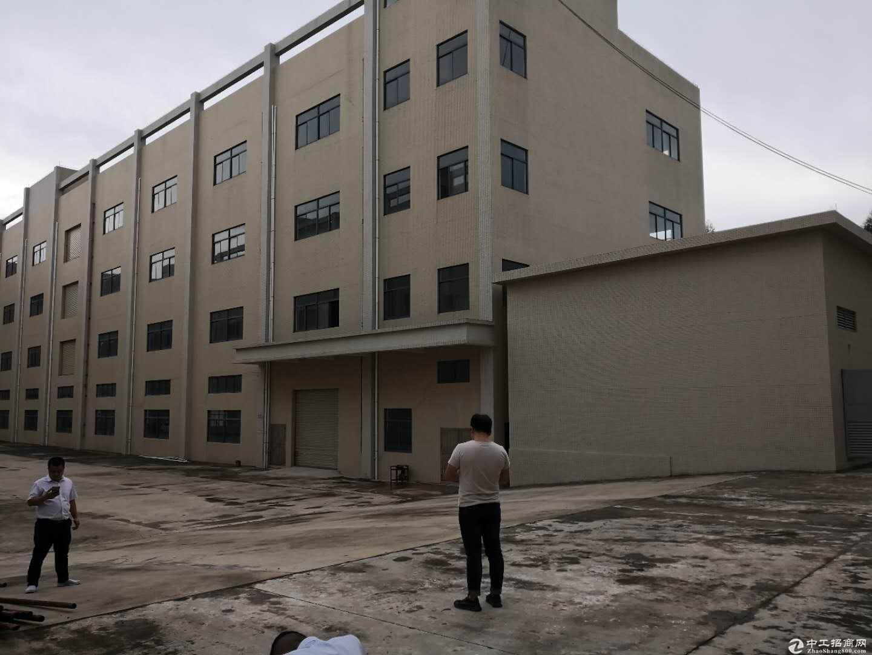 沙田镇原房东工业区独栋厂房三层4200平方米带装修出租