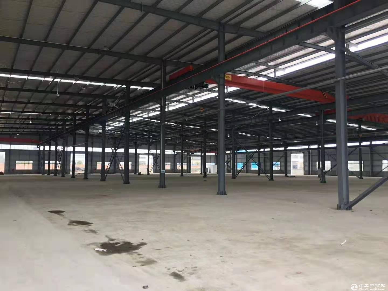 电子 食品 标准厂房仓库1000-20000-图6