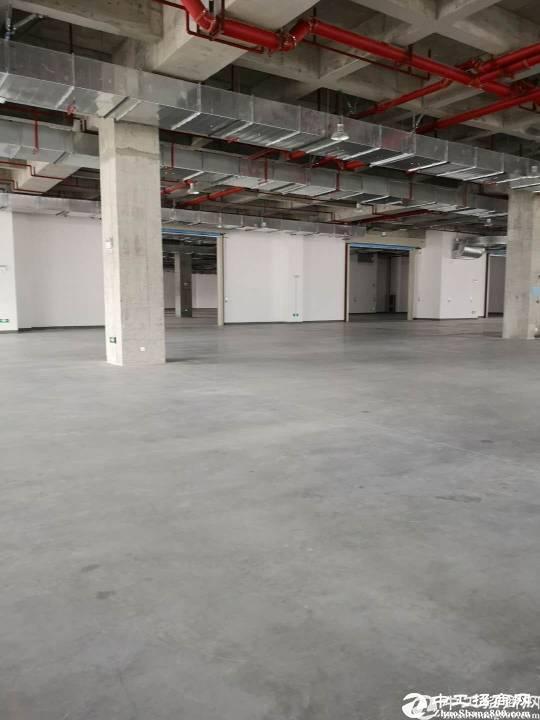横岗(盐田港)标准物流仓库3000平方米招租大小可分租
