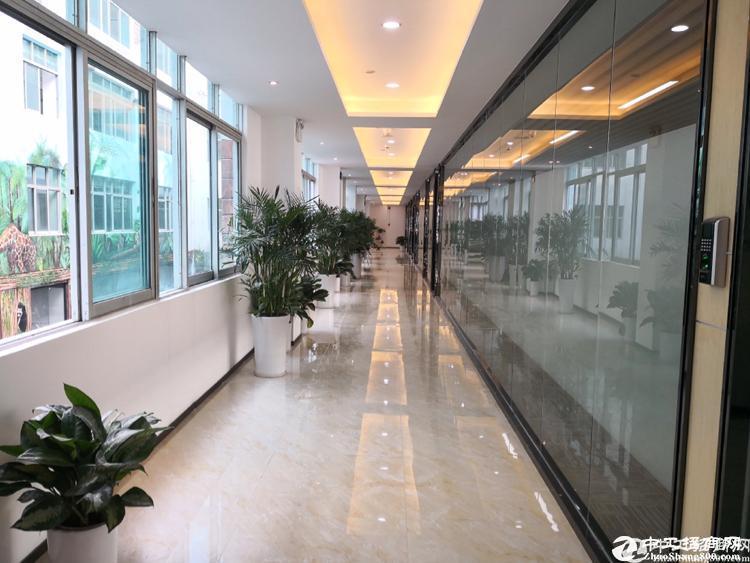 (新)南山西丽科技园500办公仓库可注册有红本带装修