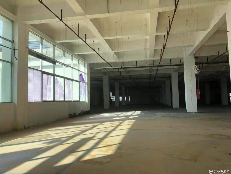 坪山 三洋湖工业区 厂房及仓库 1000.平.米