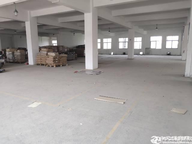 石井新出1000平独院厂房空地超大适合物流仓库