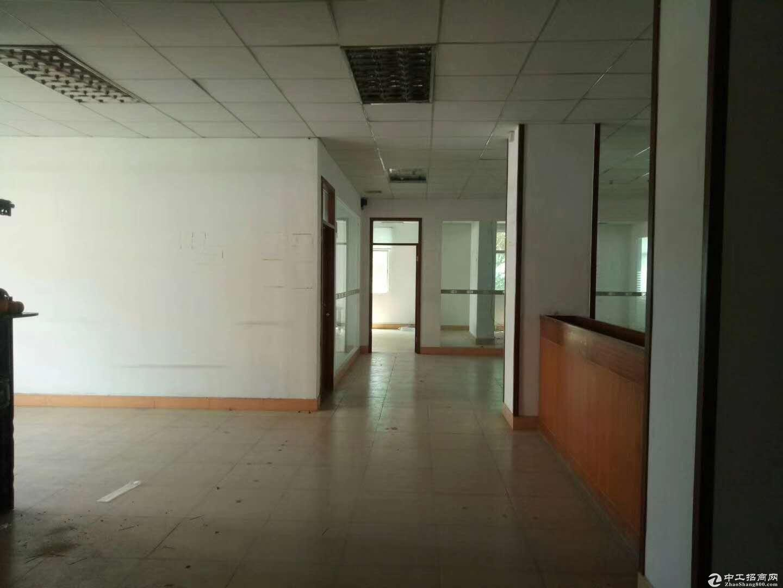 沙田镇科技园新出2楼2000平方带无尘车间