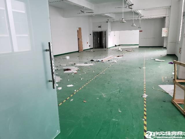 公明圳美光侨路边楼上装修620平方招租;