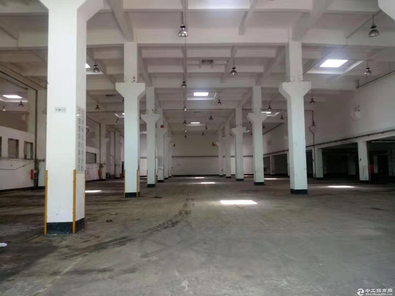 平湖红本厂房独院3000平方米招租