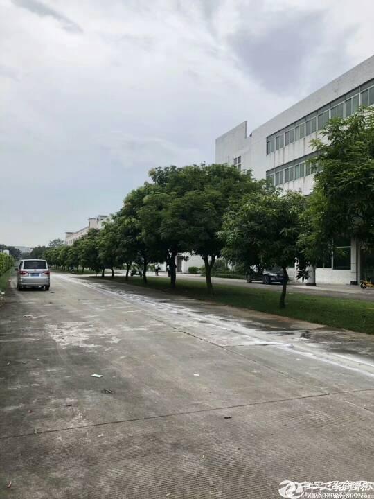 原房 东 仓库厂房实际面积出租5000平交通便利空地大