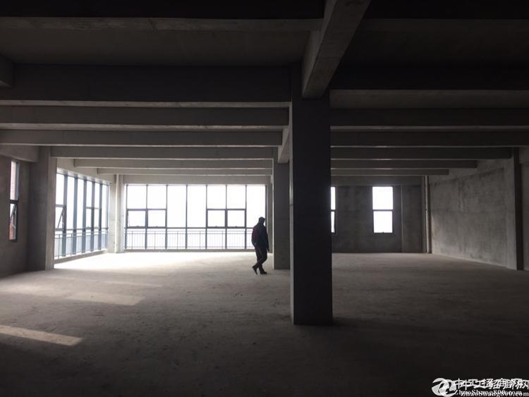 重庆两江新区水土标准厂房可租可售可定制-图3
