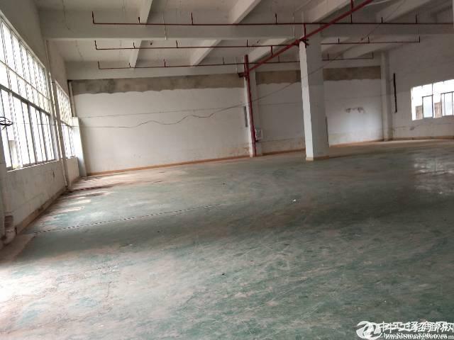 [秋长厂房]工业园区一楼625平厂房低价出租,报价18